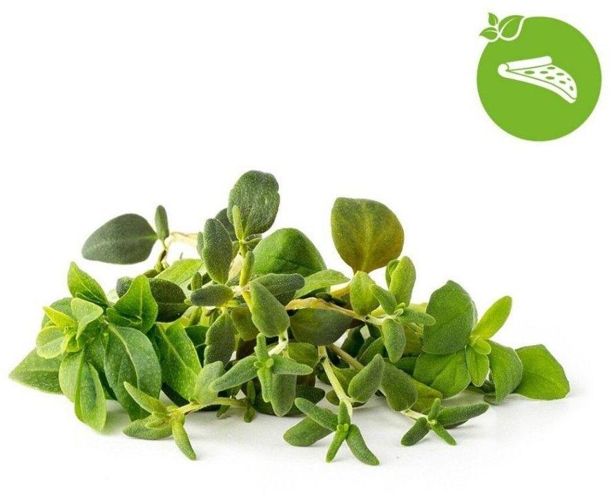 Click And Grow Smart Garden Refill 9-pack - Blomstermix