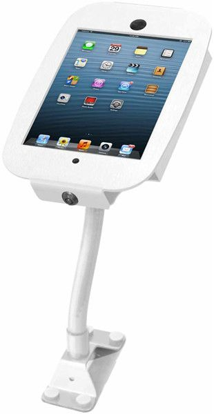 Maclocks Flex Arm Space Mini Enclosure (iPad mini)